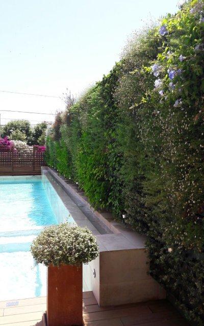 Hotel calella for Modulo jardin vertical