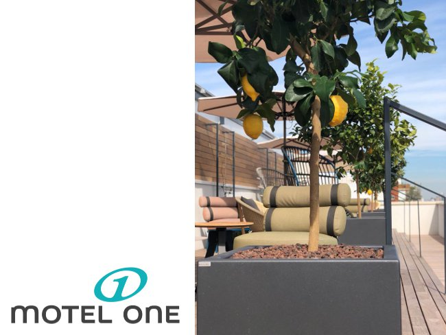 jardin-motel-one-1