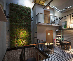 Green Walls Ecocco